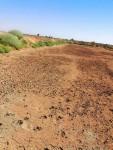 مزرعه للبيع مزرعه 15 فدان وادي سوبا مسواره سلك شايك ارتفاع مترين يوجد