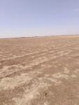 مزرعه شرق النيل شهادة بحث مسورة للبيع