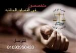 محامي احوال شخصية (عمرو زيدان تاج الدين)