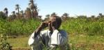 بشرى سارة لأصحاب المزارع الطاقة الشمسية هي الحل