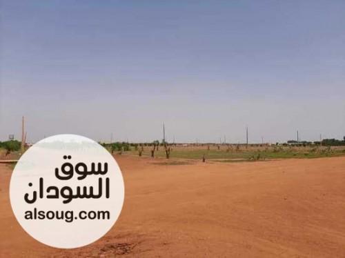 مخطط حي النصر 2 السكني،شرق النيل - صورة رقم