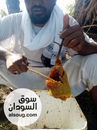 عسل نحل طبيعي - صورة رقم