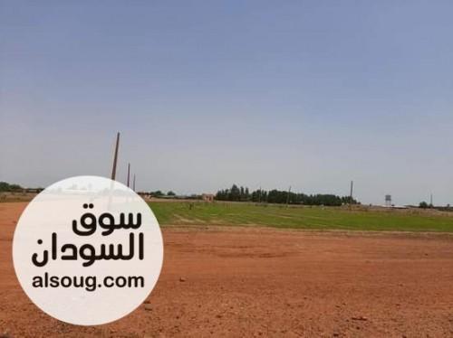 مخطط حي النصر 2 السكني، شرق النيل - صورة رقم