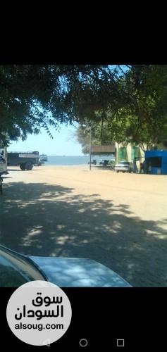 ارض زراعية للبيع في النيل الابيض - صورة رقم