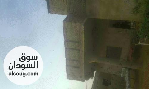 بيت للبيع في الصالحة ظلط وربع 8 - صورة رقم
