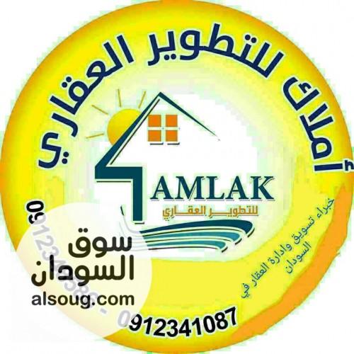 منزل  جديد مؤسس للبيع بالمعموره يفتح في شارع 12 م من أملاك العقاريه - صورة رقم