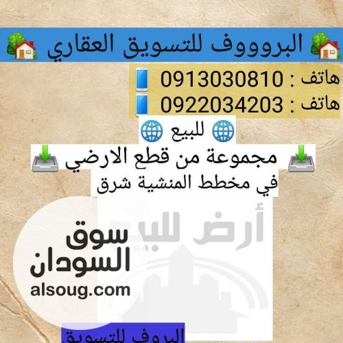 للبيع مجموعة من قطعة الاراضي في المنشيه شرق - Image #